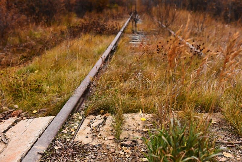 Vieilles voies ferroviaires abandonnées photo libre de droits