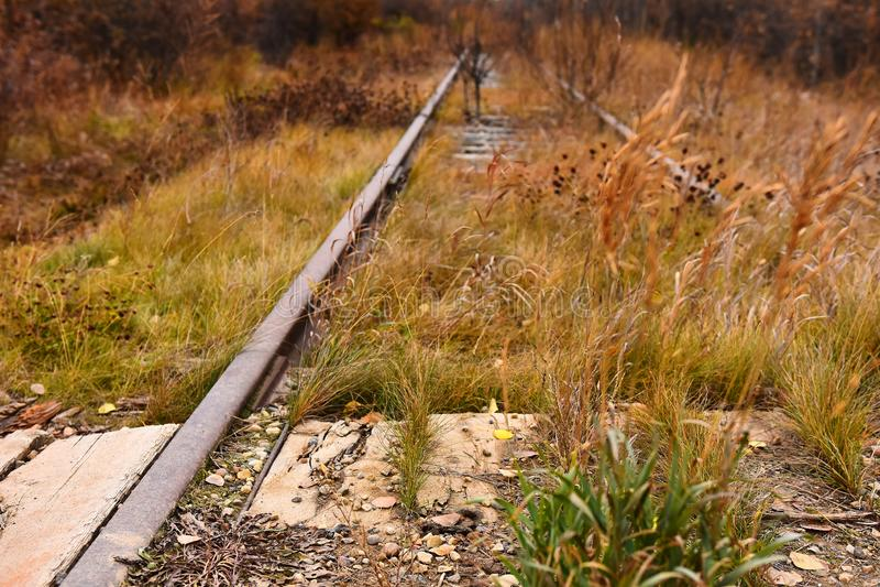 Vieilles voies ferroviaires abandonnées photos stock