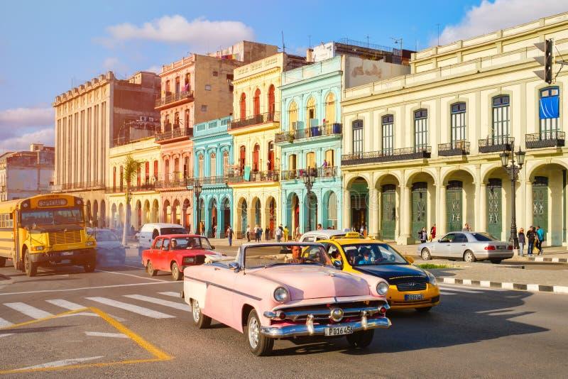 Vieilles voitures classiques et bâtiments colorés à La Havane du centre photographie stock libre de droits