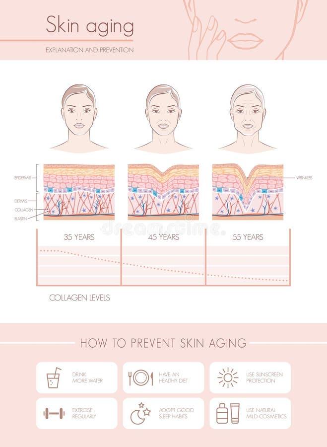 Vieillissement de peau illustration stock