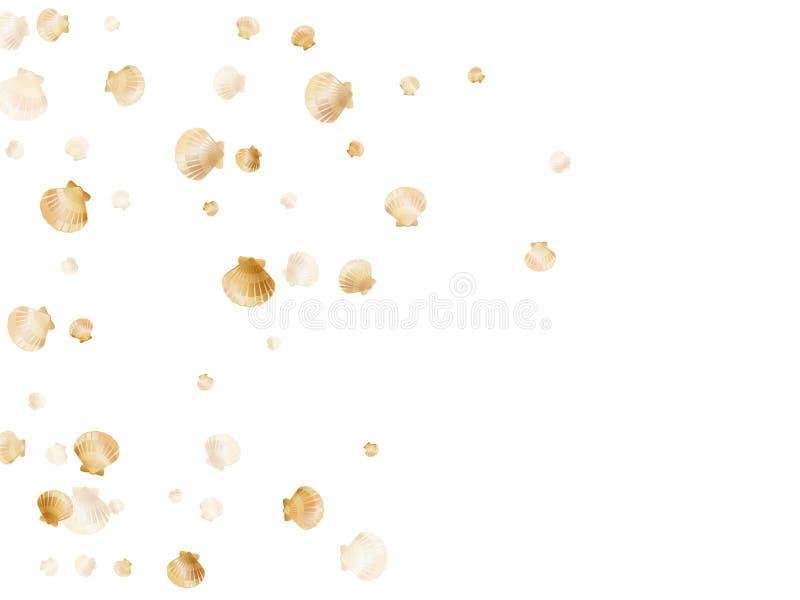 Vieira exótica, escudo bivalve da pérola, molusco marinho isolado no fundo selvagem branco da natureza da vida ilustração do vetor