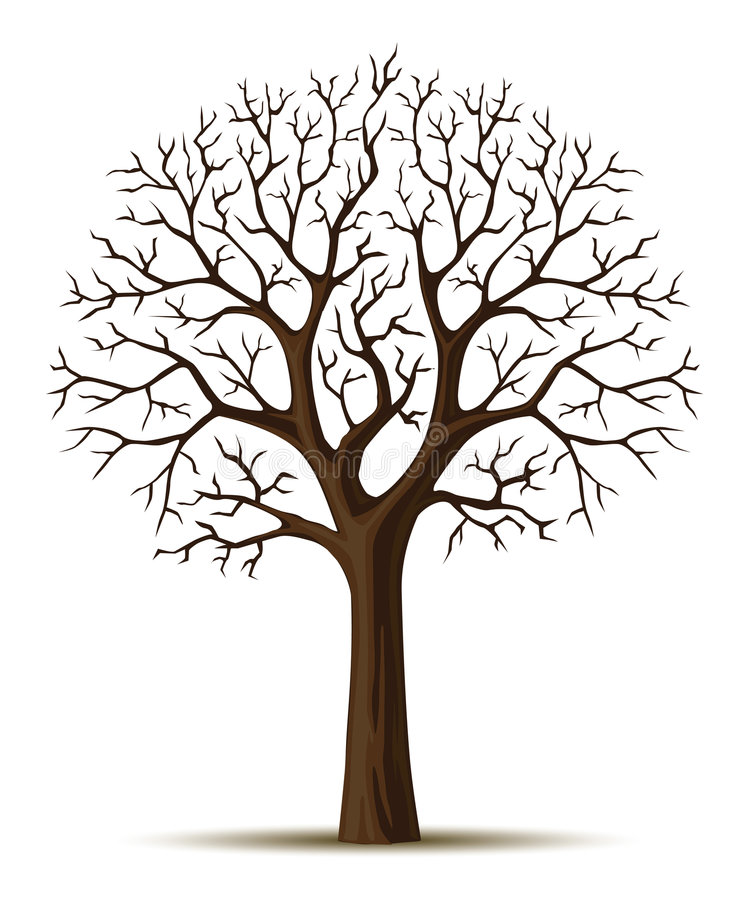 Vieja arrugada del árbol de la silueta del vector libre illustration