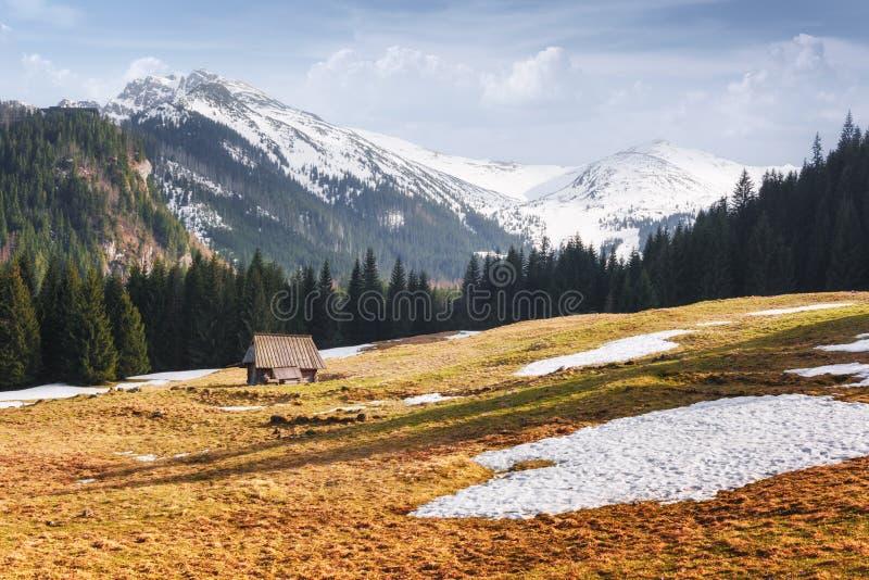 Vieja cabaña de madera en el Alto Tatras de primavera fotos de archivo