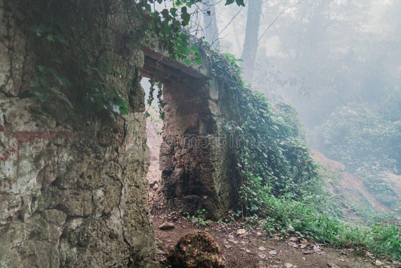 Vieja entrada asustadiza al cementerio del bosque en niebla densa foto de archivo libre de regalías