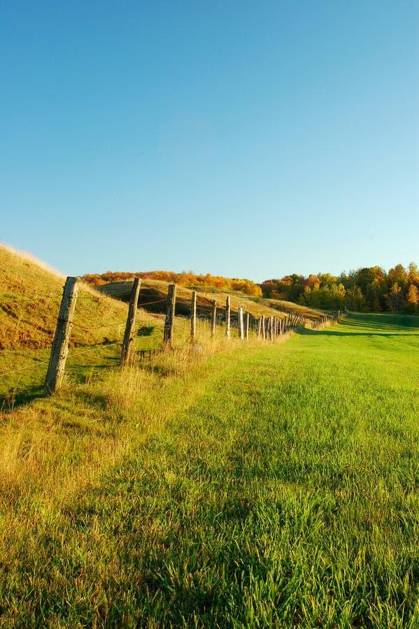 Vieja fila de la cerca en un pasto imagen de archivo