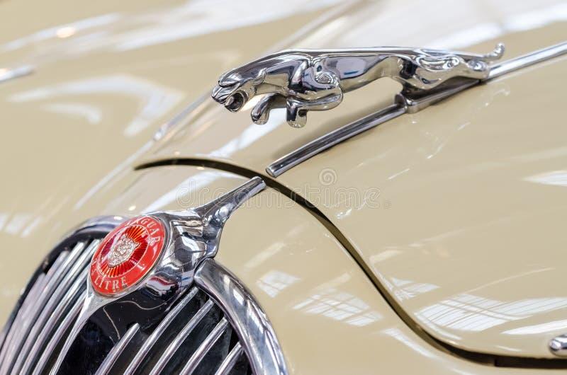 Vieja muestra clásica de Jaguar imagen de archivo