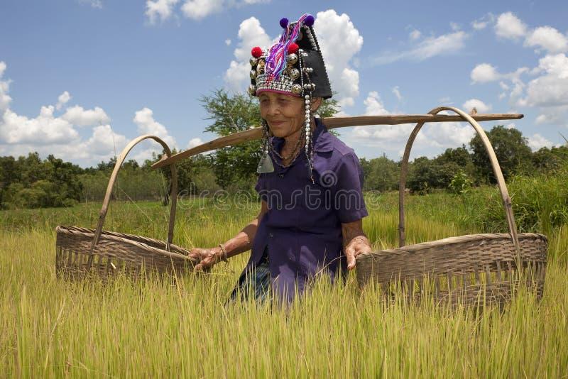 Vieja mujer asiática, Akha foto de archivo libre de regalías