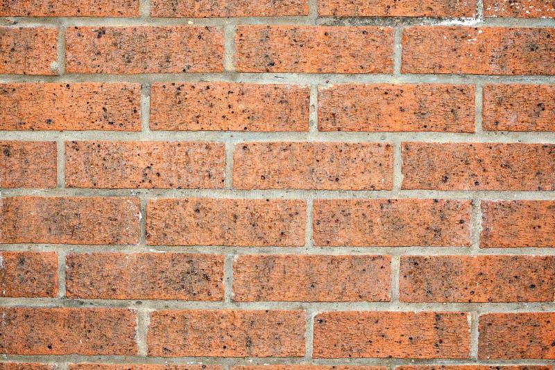 Vieja textura de la pared de ladrillo fotografía de archivo libre de regalías