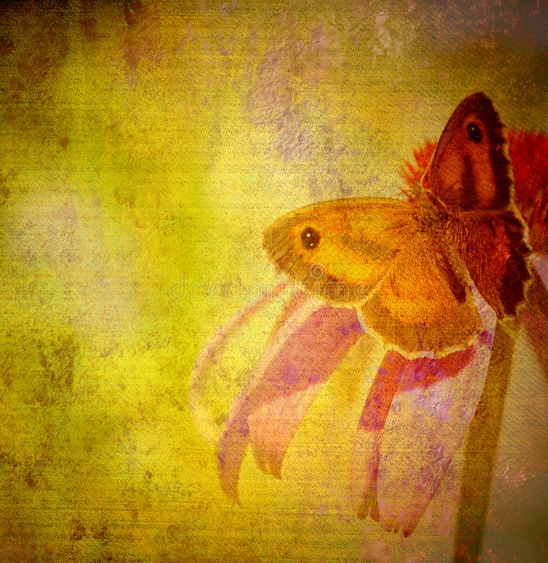 Vieja textura de la tela del papel de la mariposa del grunge foto de archivo