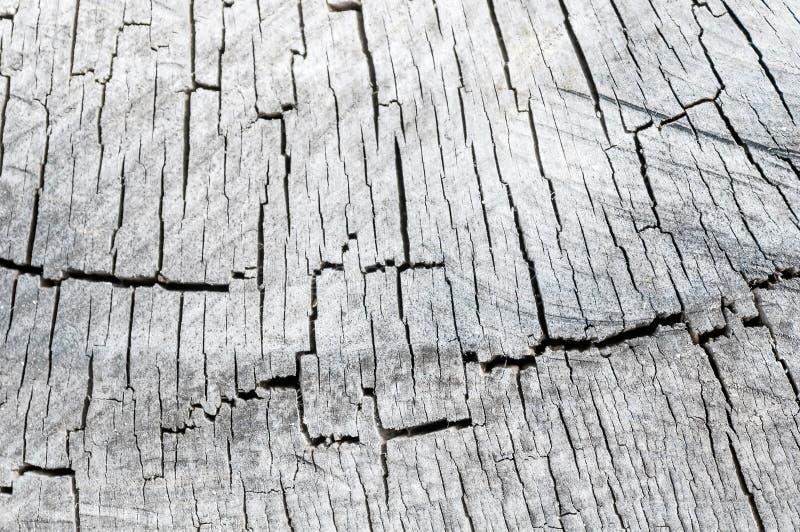 Vieja textura de madera de la madera en el contexto fotos de archivo