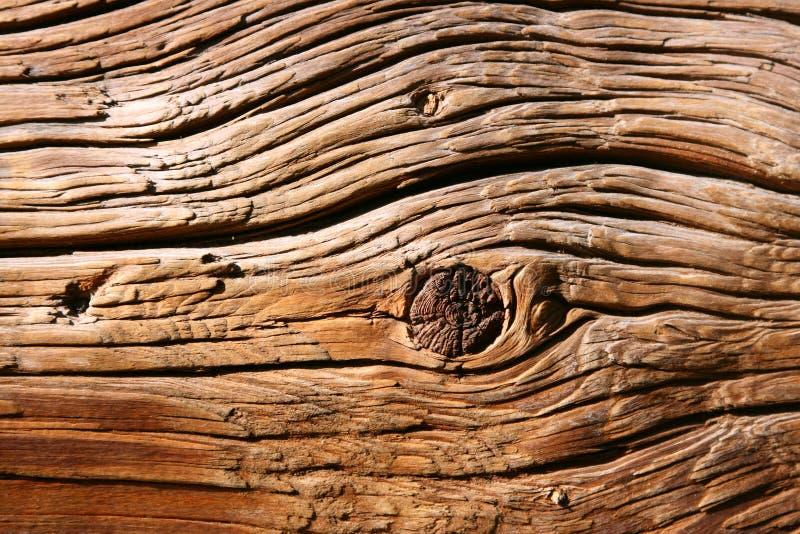 Vieja textura de madera del primer fotografía de archivo