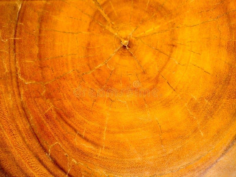 Vieja textura de madera de la naturaleza fotografía de archivo libre de regalías