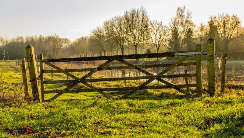 Vieja y torcida puerta de madera cerca de un área de la naturaleza fotografía de archivo libre de regalías