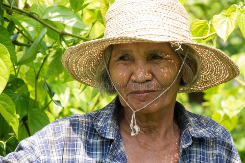 Viejas mujeres asiáticas del retrato imagen de archivo libre de regalías