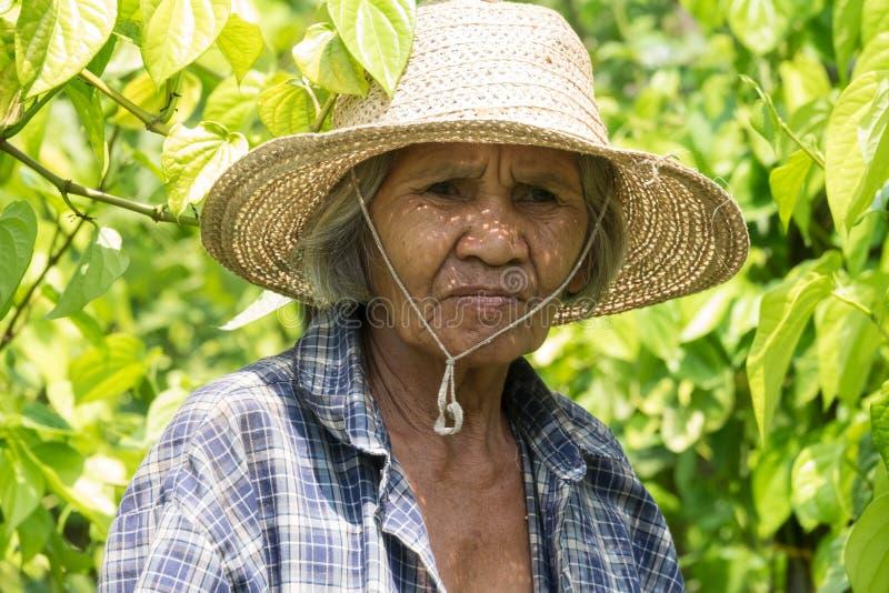 Viejas mujeres asiáticas del retrato fotos de archivo libres de regalías