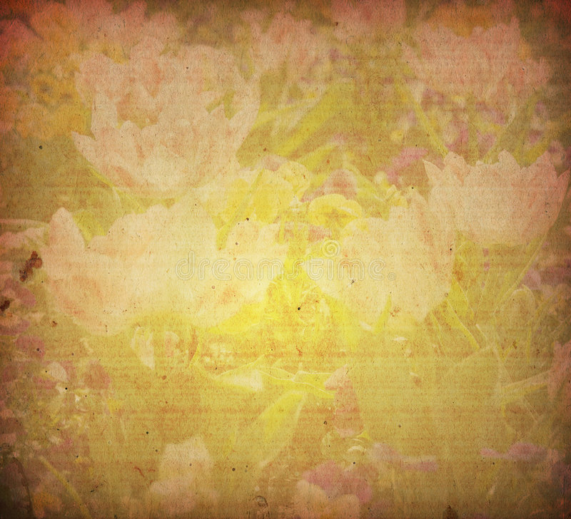 Viejas texturas de la flor de papel fotografía de archivo