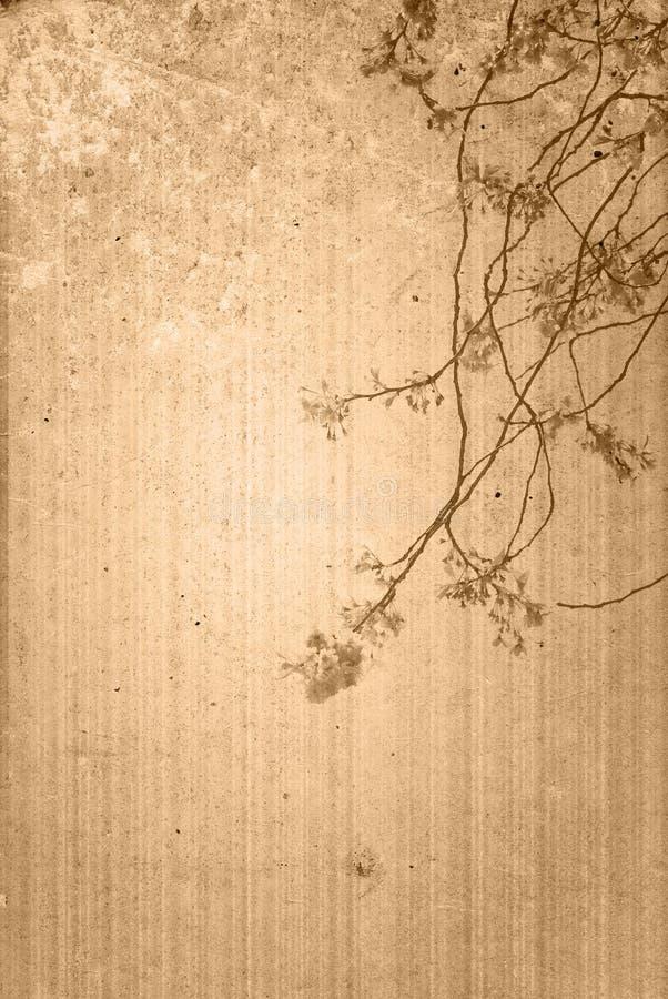 Viejas texturas de la flor de papel foto de archivo libre de regalías