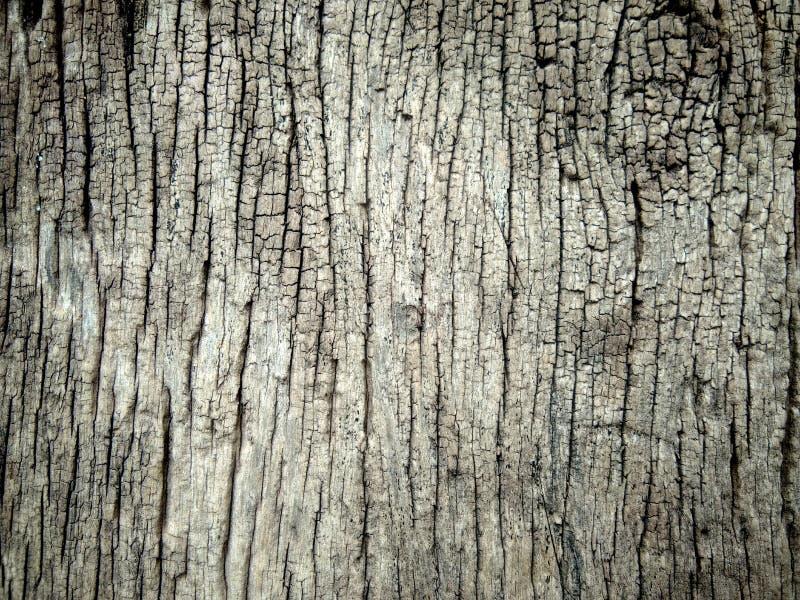 Viejo bckgroud de madera fotografía de archivo