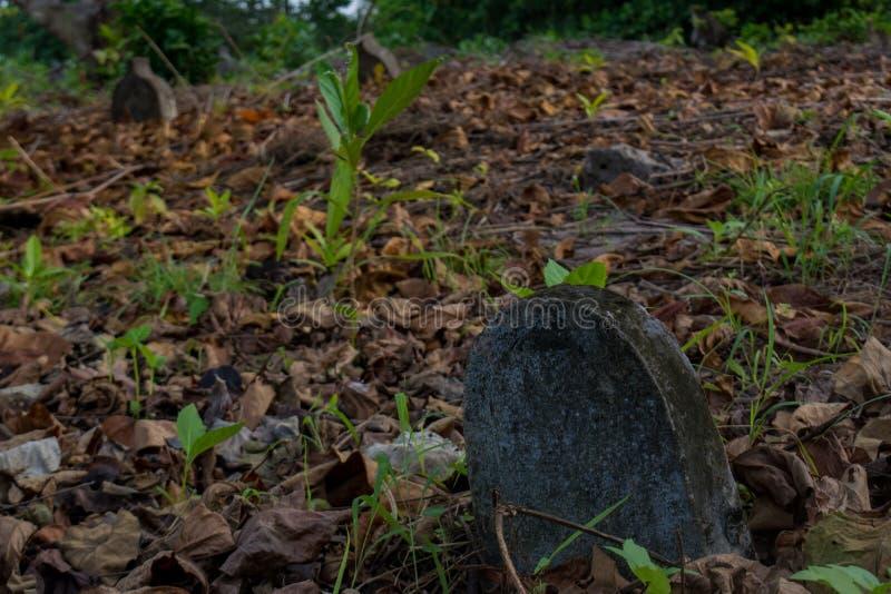 Viejo cementerio espeluznante con los sepulcros en la isla local tropical Fenfushi fotos de archivo libres de regalías