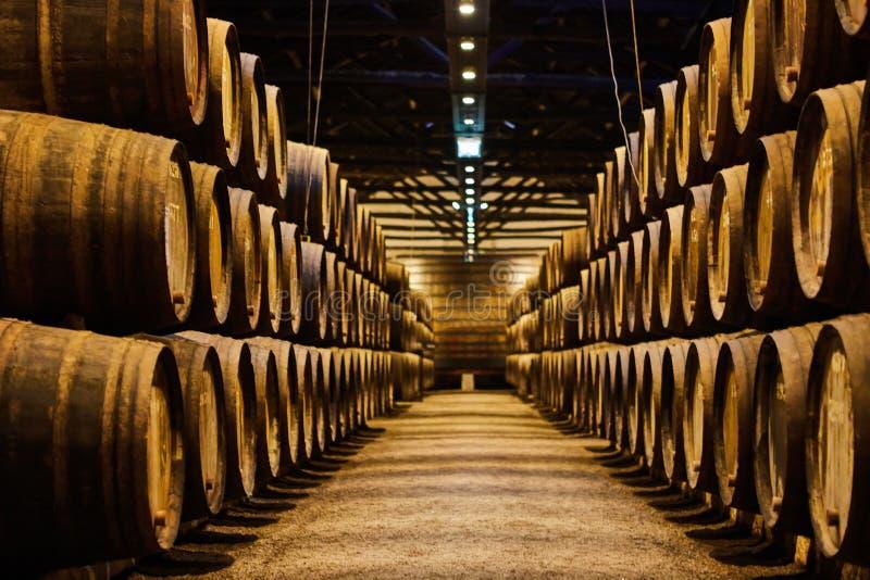 Viejo envejeci? barriles de madera tradicionales con el vino en una c?mara acorazada alineada en s?tano fresco y oscuro en Italia fotos de archivo libres de regalías