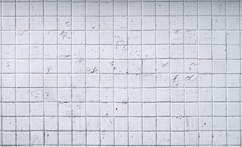Viejo fondo blanco de la pared de la teja imagen de archivo libre de regalías