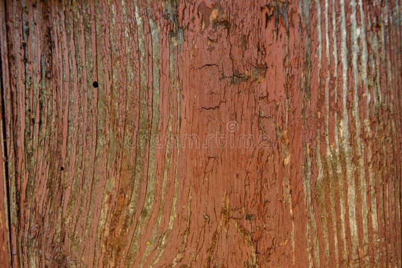 Viejo fondo de madera descolorado marrón vibrante pintado del tablaje con los defectos imagenes de archivo
