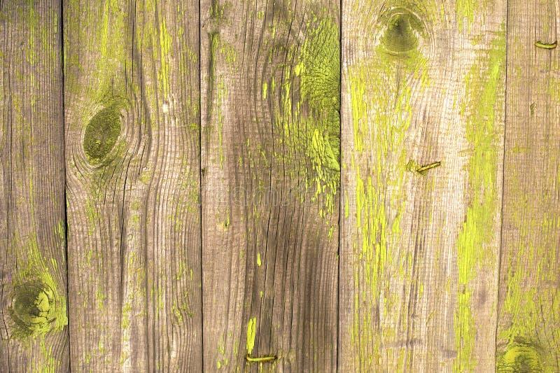 Viejo fondo de madera pintado verde foto de archivo libre de regalías