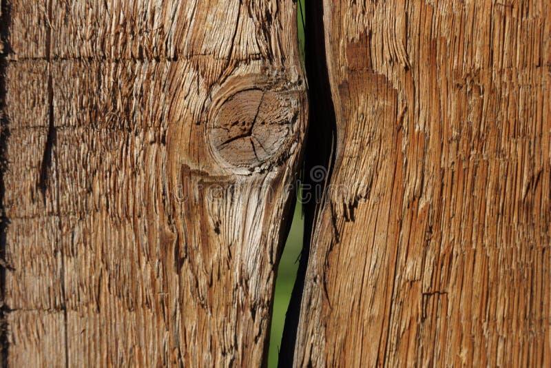 Viejo fondo del grunge de los tableros del pino de madera de la textura imagenes de archivo