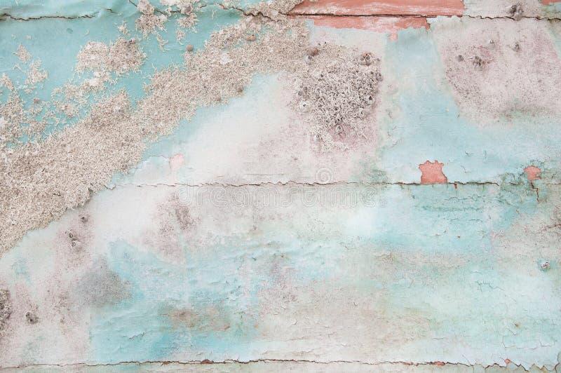 Viejo fondo elegante lamentable de madera con la calcificación envejecida del mus fotos de archivo