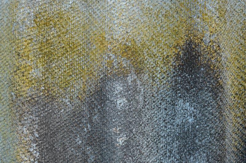 viejo fondo ondulado Liquen-cubierto de la pizarra Pizarra ondulada envejecida con el musgo, primer del liquen fotografía de archivo