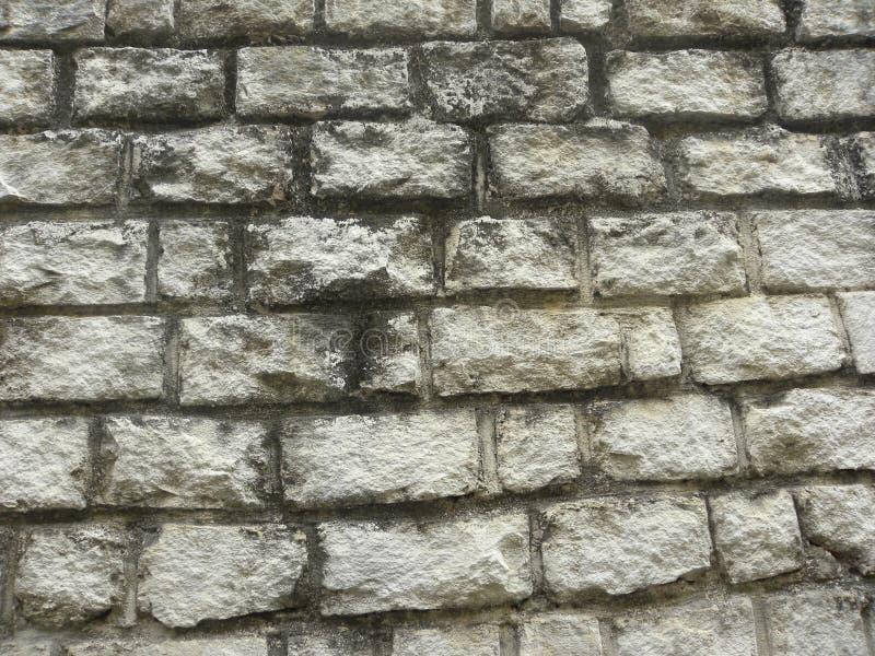 Viejo fondo rústico del muro de cemento del color gris y blanco imágenes de archivo libres de regalías