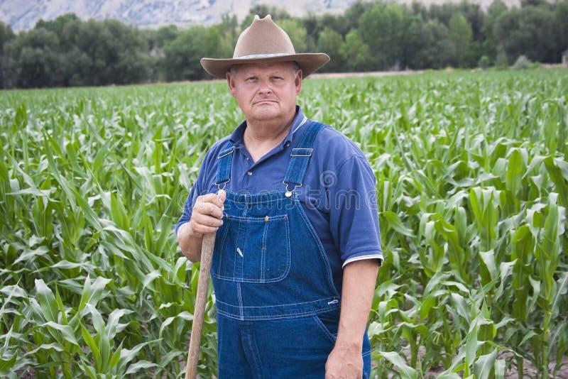 Viejo granjero que trabaja en sus campos foto de archivo