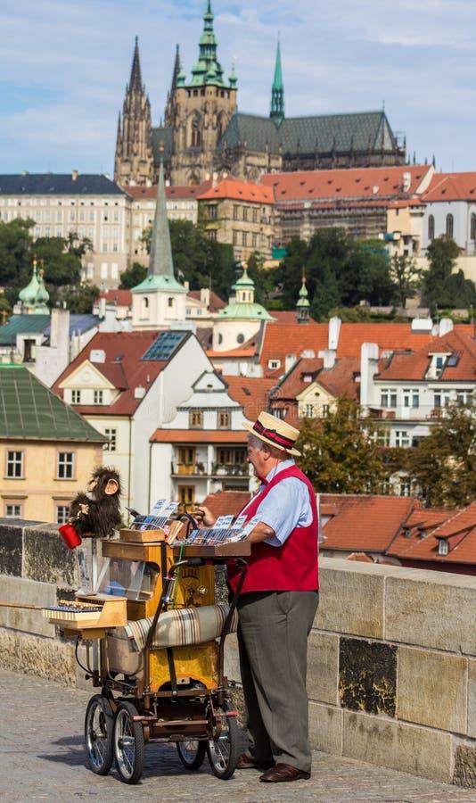 Viejo hombre con el castillo en fondo