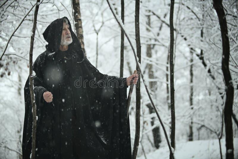 Viejo hombre sabio en bosque oscuro imagen de archivo libre de regalías