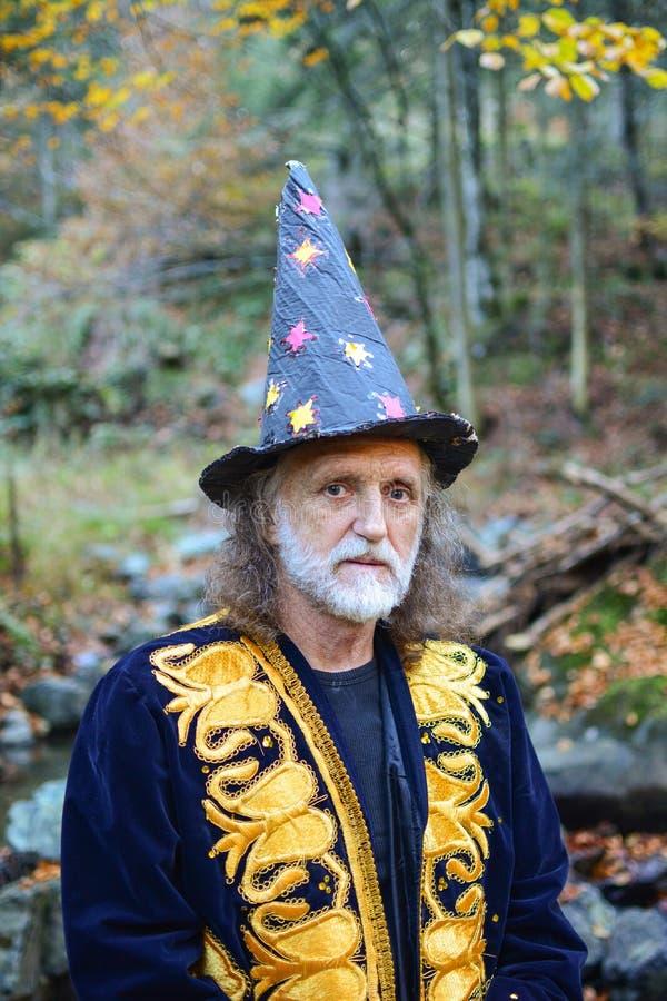 Viejo mago con el pelo y la barba grises fotos de archivo