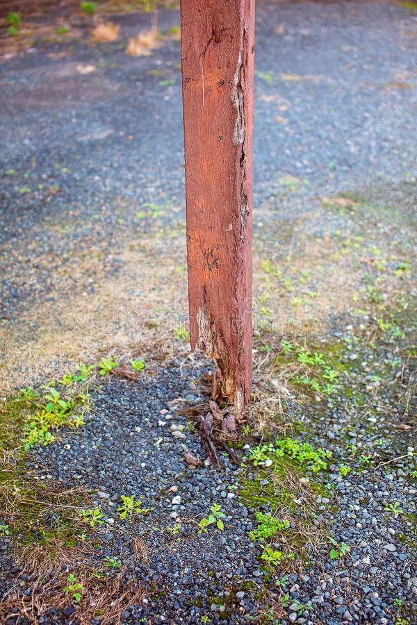 Viejo poste de la madera de la descomposición fotos de archivo libres de regalías