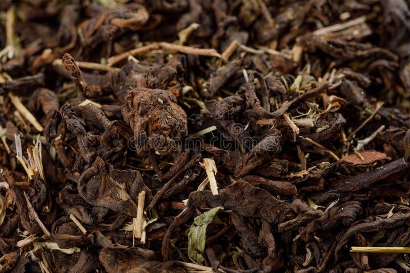 Viejo Shu Puerh Chinese fermentó el té negro, visión superior Foto macra fotos de archivo libres de regalías