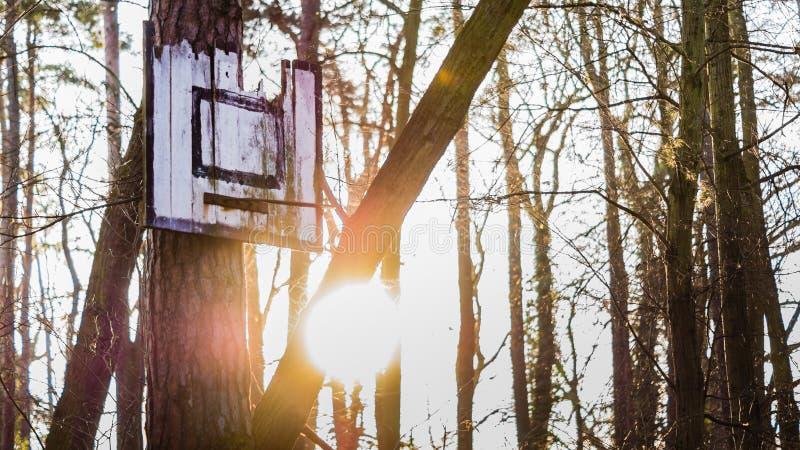 Viejo tablero oxidado quebrado del baloncesto del metal en puesta del sol imagen de archivo