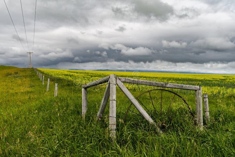 Viejos cerca y campo contra un cielo dramático en Alberta meridional, Canadá fotografía de archivo libre de regalías