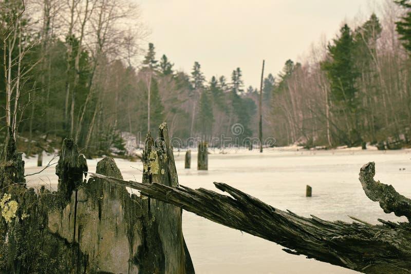 Viejos ganchos y pantano congelado foto de archivo