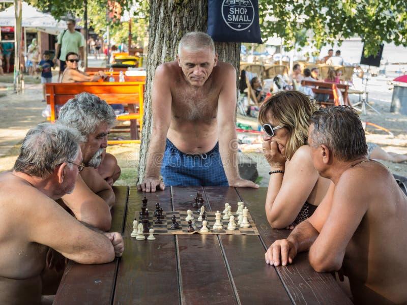 Viejos hombres que juegan a ajedrez en swisuit en una tabla en un parque de Novi Sad, capital de Voivodina fotos de archivo