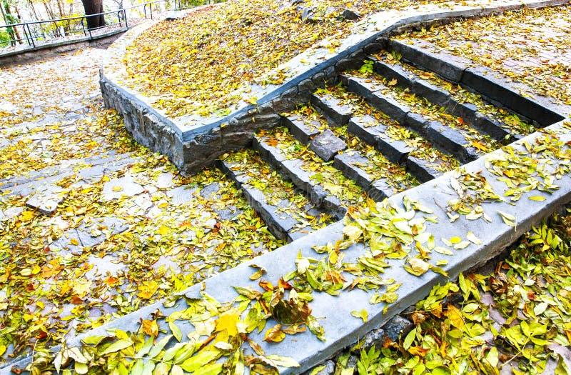 Viejos pasos en un bosque durante el tiempo del otoño imágenes de archivo libres de regalías