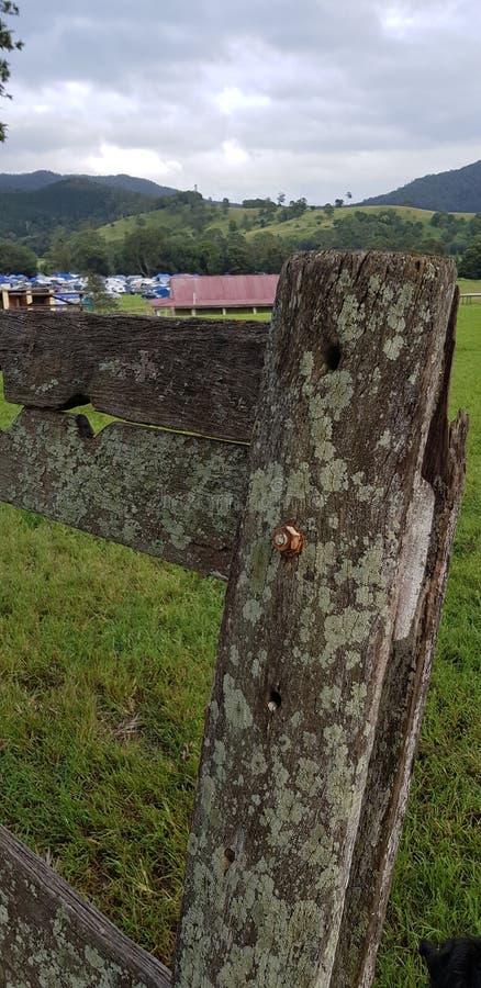 Viejos posts de la cerca de la granja imagen de archivo