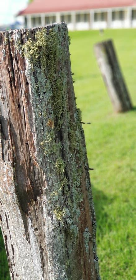 Viejos posts de la cerca de la granja fotos de archivo