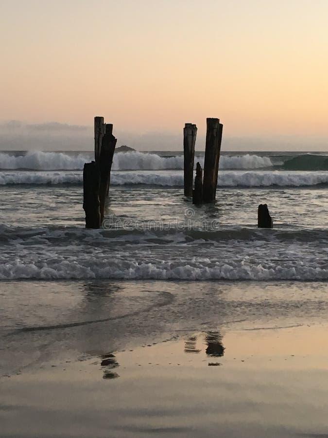 Viejos posts de madera en la playa del St Clair imágenes de archivo libres de regalías