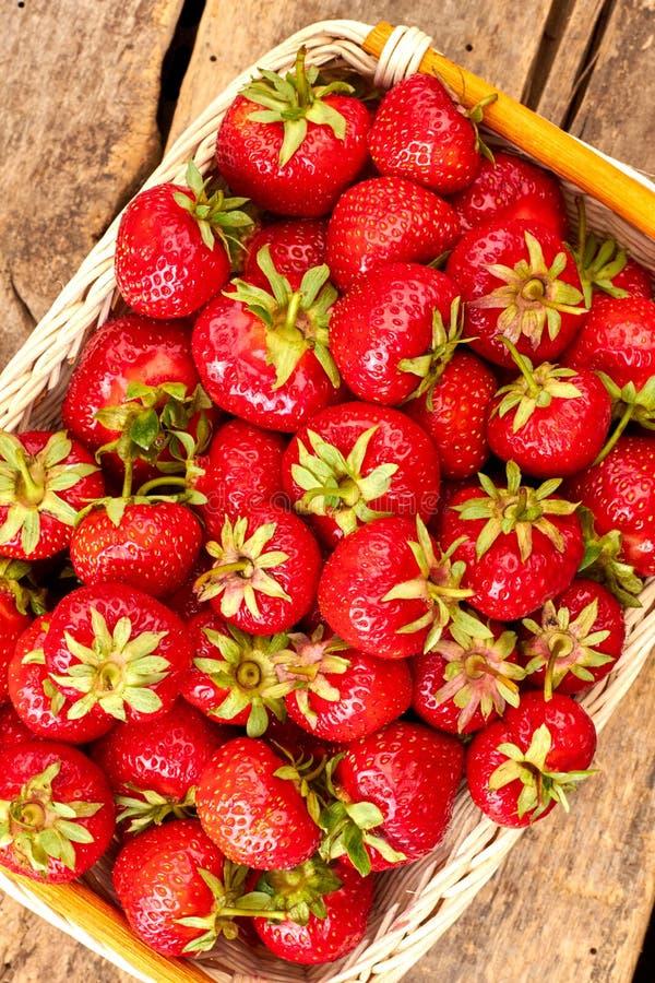 Viel der frischen Erdbeere im Korb stockfotografie