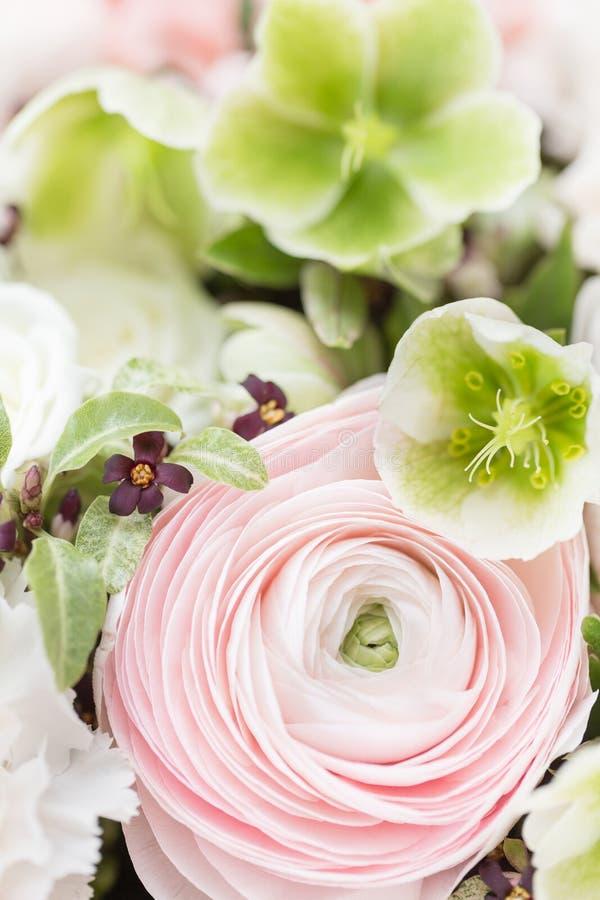 Viele überlagerten Blumenblätter Persische Butterblume Bündel blaß - rosa Ranunculus blüht hellen Hintergrund Tapete, vertikales  stockfoto