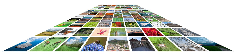 Viele Abbildungen gegen den weißen Hintergrund lizenzfreie stockbilder