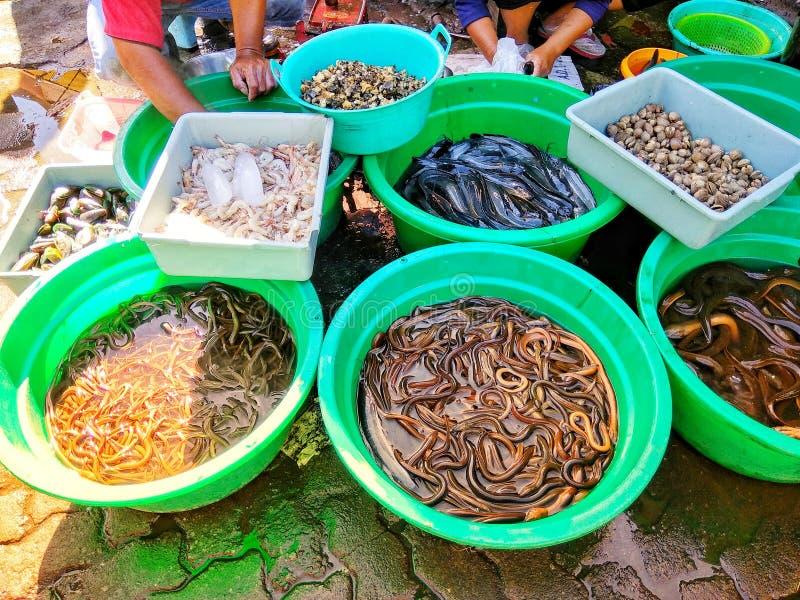 Viele Art von Fischen im Markt stockbilder