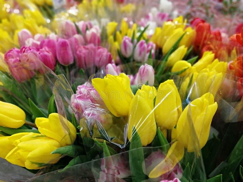 Viele Blumensträuße von mehrfarbigen Tulpen stockbild